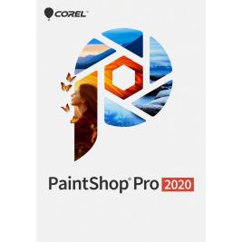 ESD PaintShop Pro 2020 ESD ML