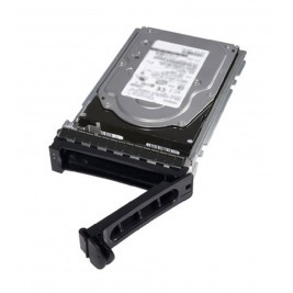 DELL HDD 240GB SSD SATA Read Intensive 6Gbps 512 2.5'' Hot-plug Boot Drive, 1 DWPD, pro 14G rack